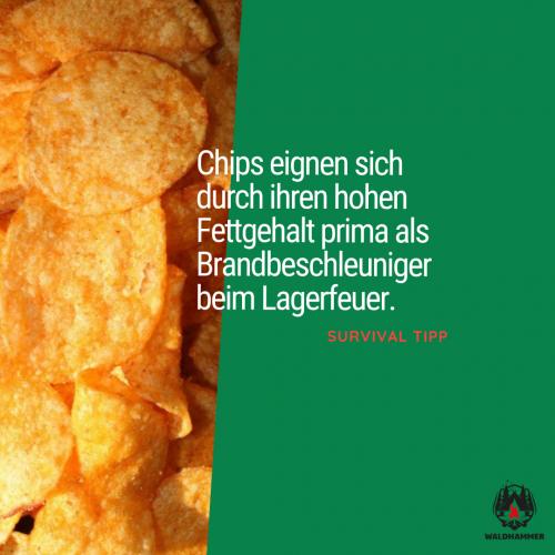 Chips als Brandbeschleuniger